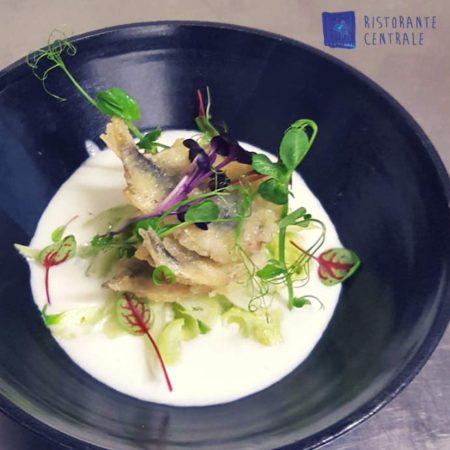 Crema di mozzarella di bufala, insalatina di puntarelle e alici fresche in tempura